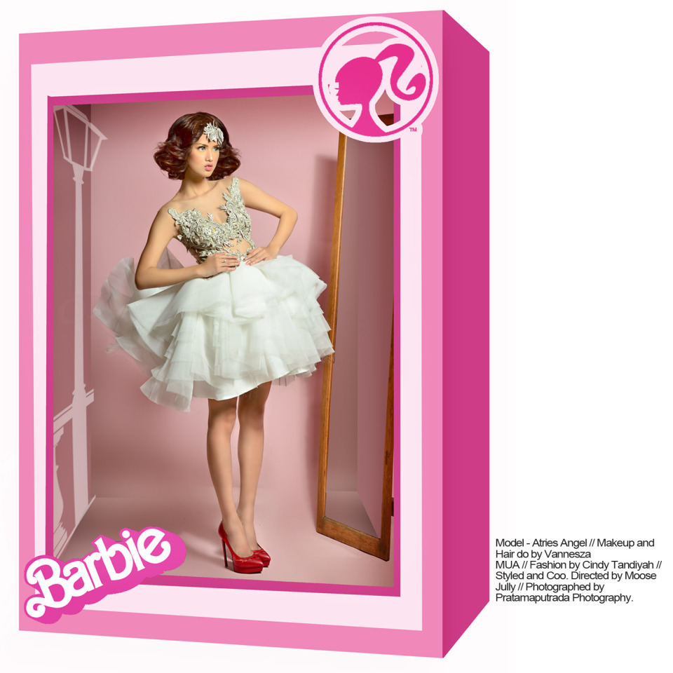 barbie in the box ig